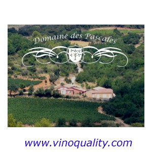 Bag in Box Domaine Pascales Rosado 10L